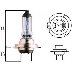 12 V H7 55 W (Xenon)