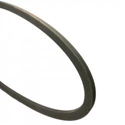 Courroie Gates GA0102216
