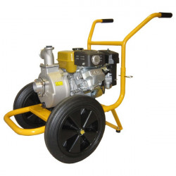 Groupe motopompe essence WORMS TP36EX 520L/min avec chariot